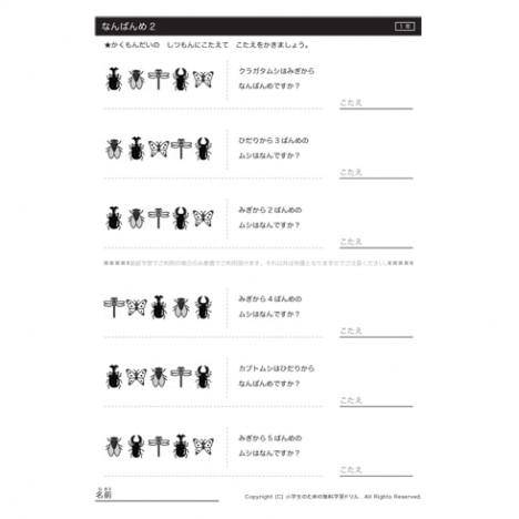 10までの数について、順序としての意味を知り、集合と順序の違いや、前後、上下、左右などを使った位置の表し方について学習できます。